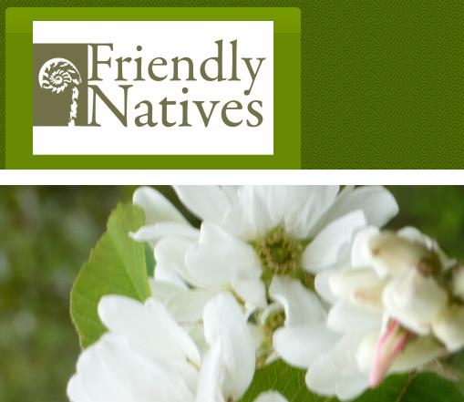 Full Service Nurseries With Native Plant Selections Whole And Retail By Ointment